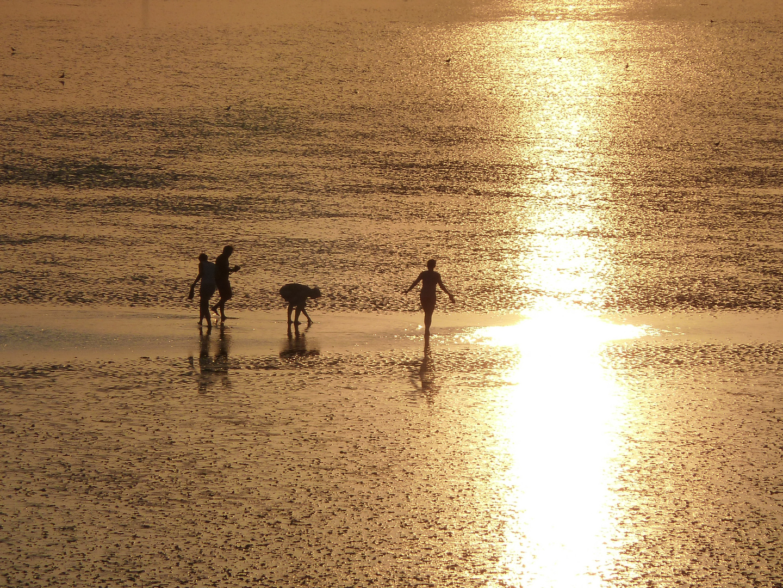 # Wattwanderer an der Nordsee 1 #