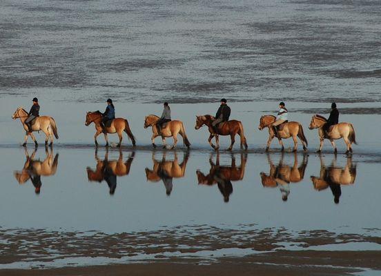 Wattwanderung zu Pferde