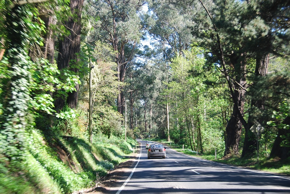 Way to Yarra Valley