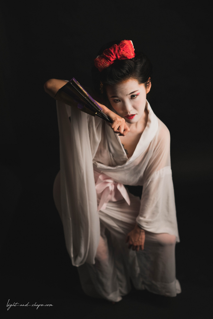 Weapons of a Geisha