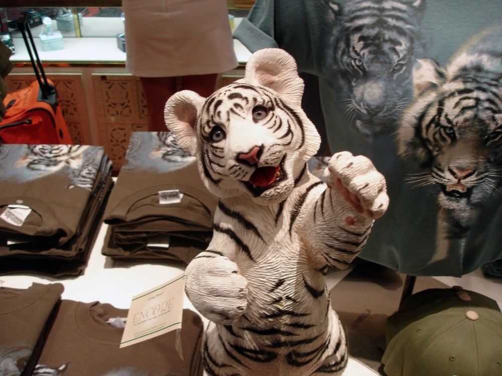 Weck den Tiger in Dir!