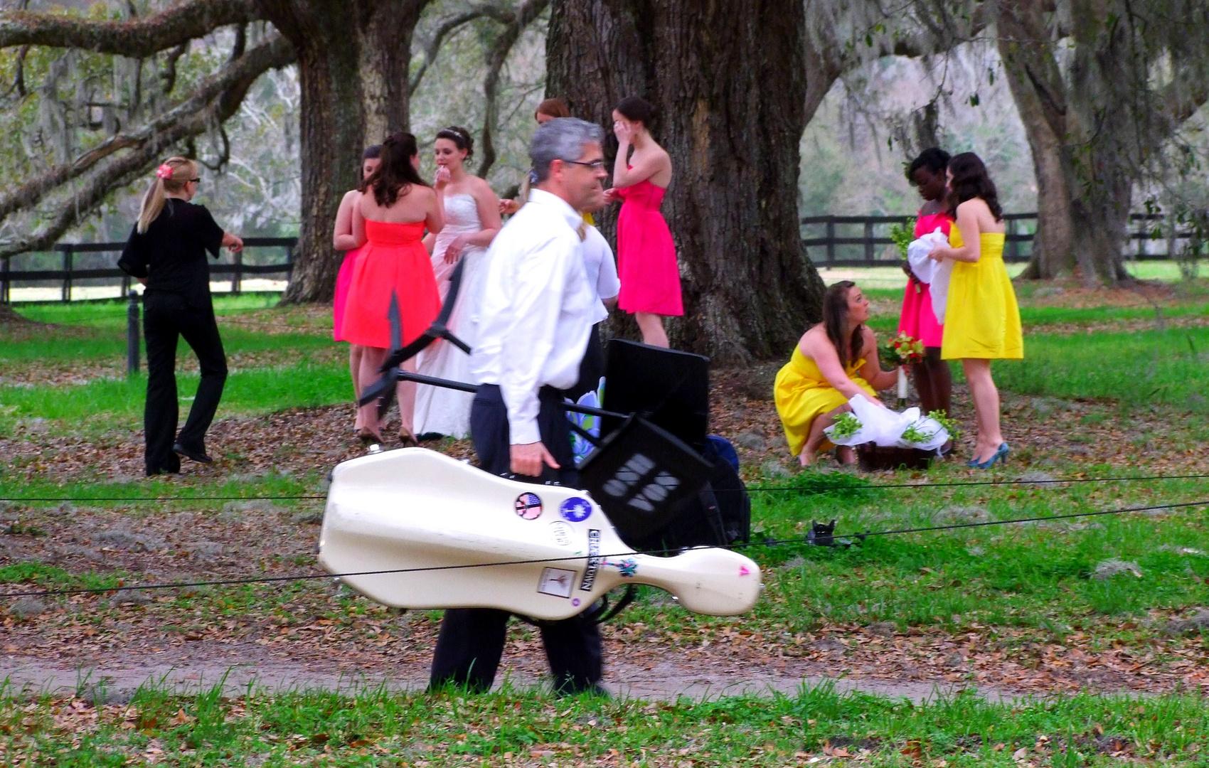 Wedding in Boone Hall