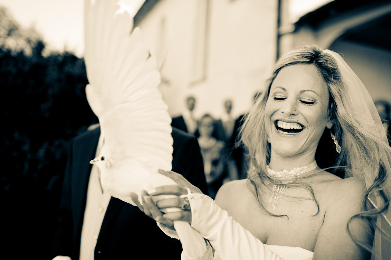 Weddingdove