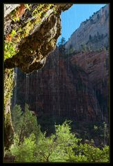 Weeping Rock, Zion NP
