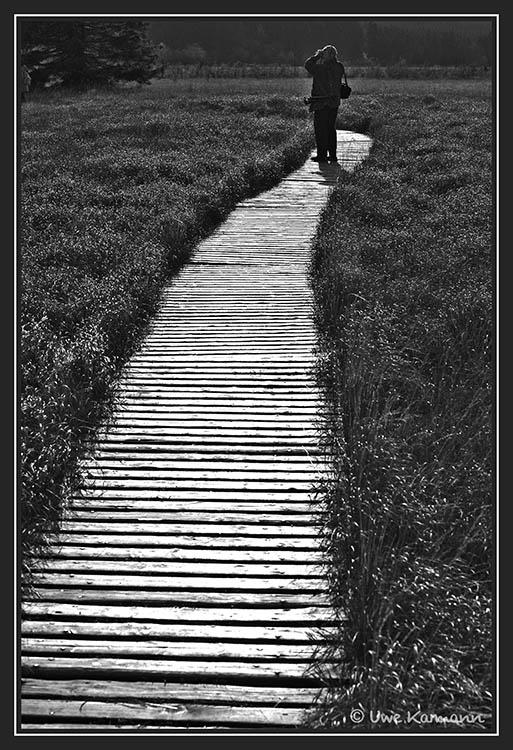 Weg aus Licht (01515)