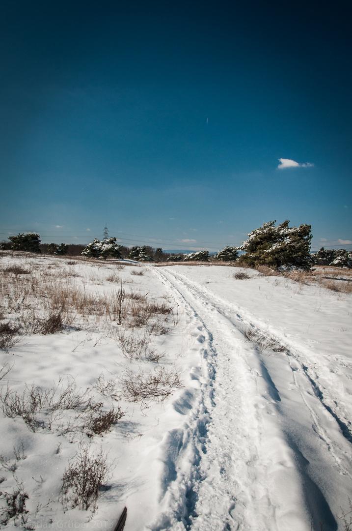 Weg durch den Schnee