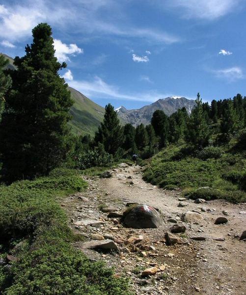 Weg im Ötztal