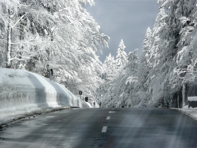Weg in den Schnee
