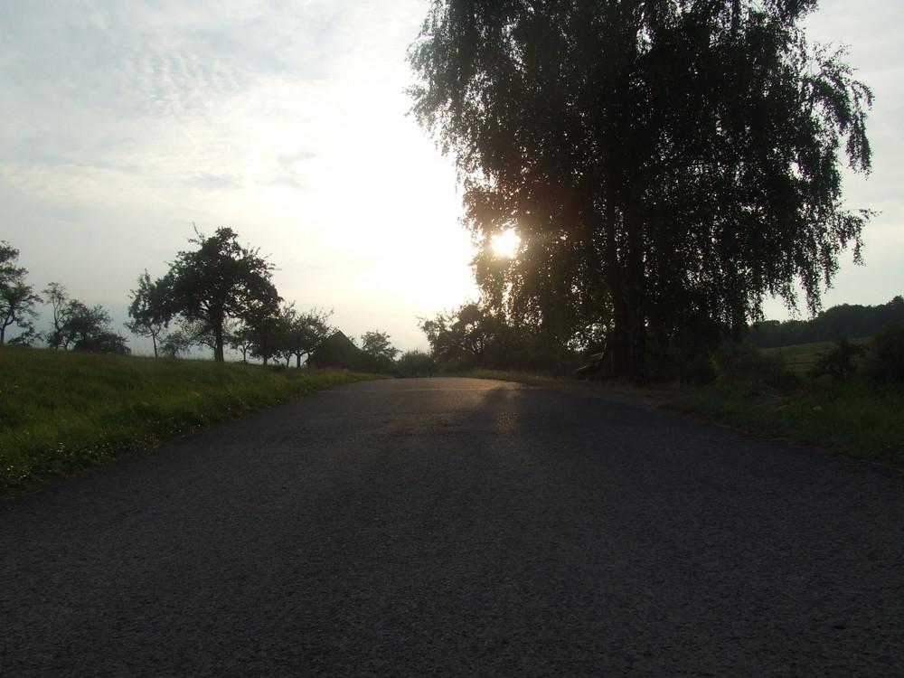 Weg in den Spessart