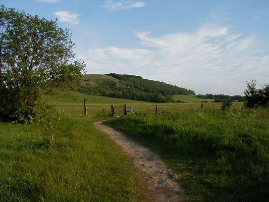 Weg zum Dörnberg Naturschutzgebiet am Dörnberg (Kreis Kassel) 342 N.N.
