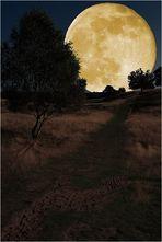 « Weg zum Mond »