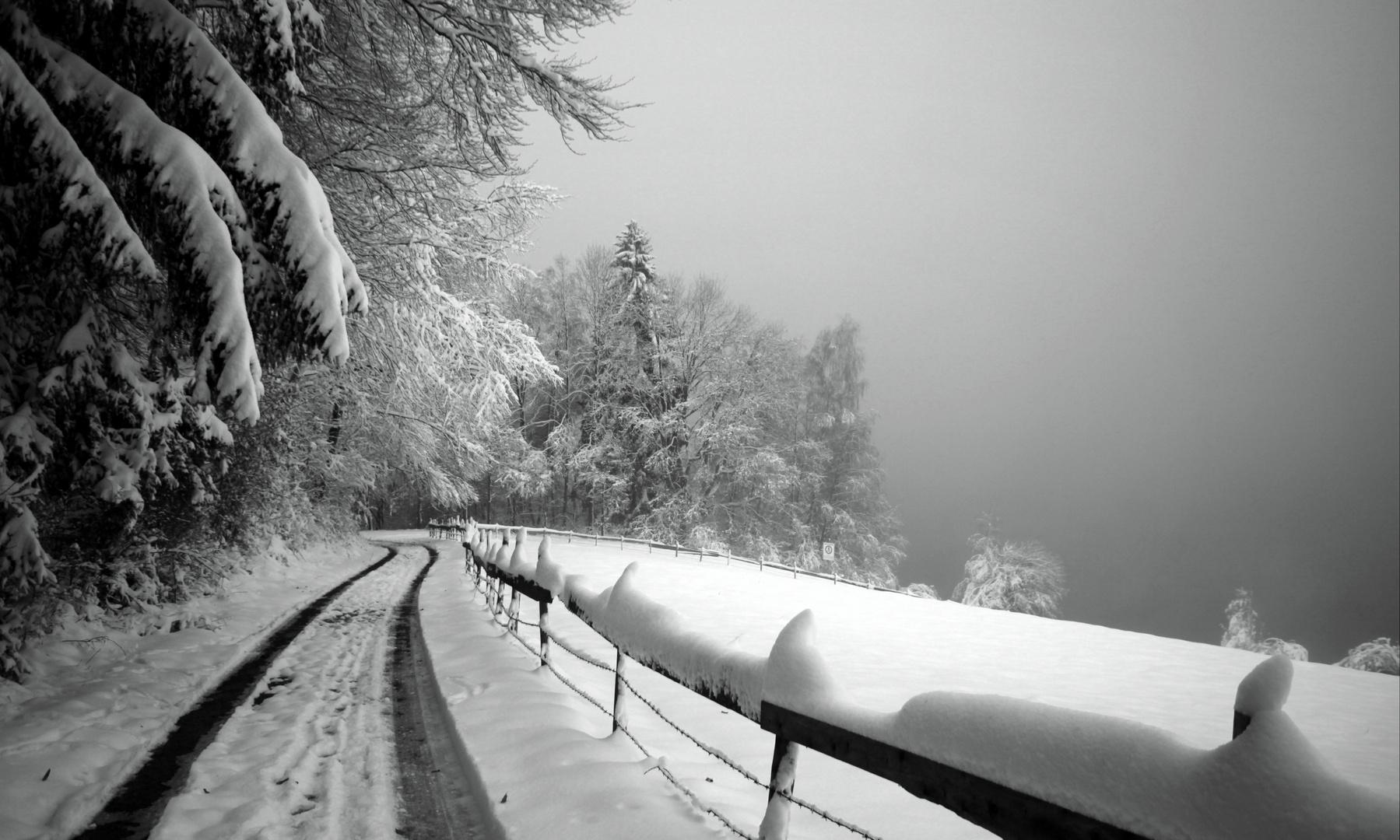 Weg zum Rottachsee