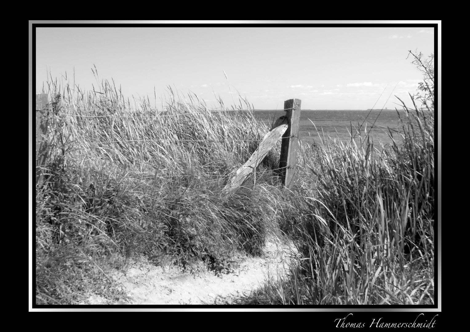 Weg zum Strand an der Ostsee