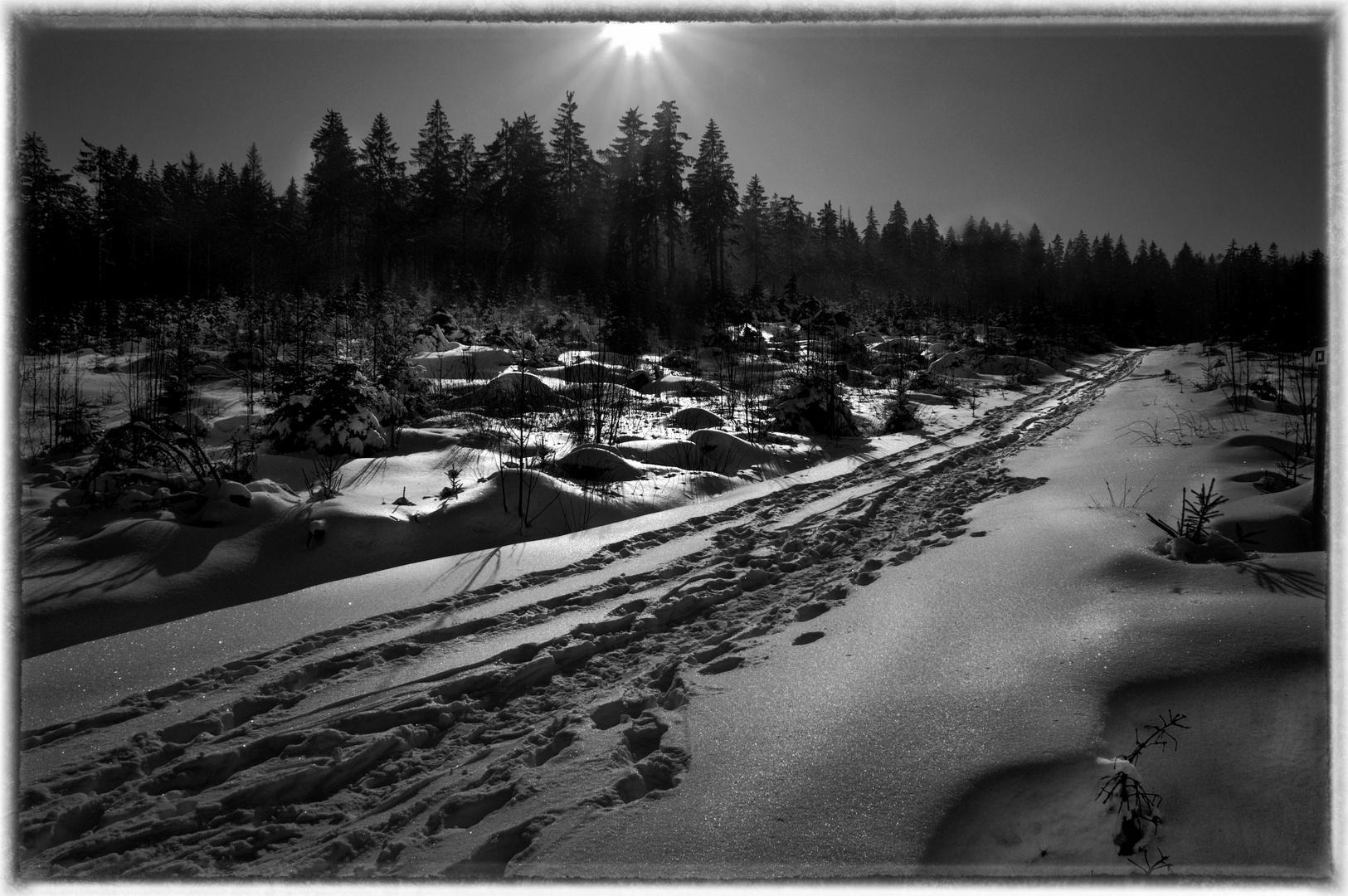 Weg zum Waldstein
