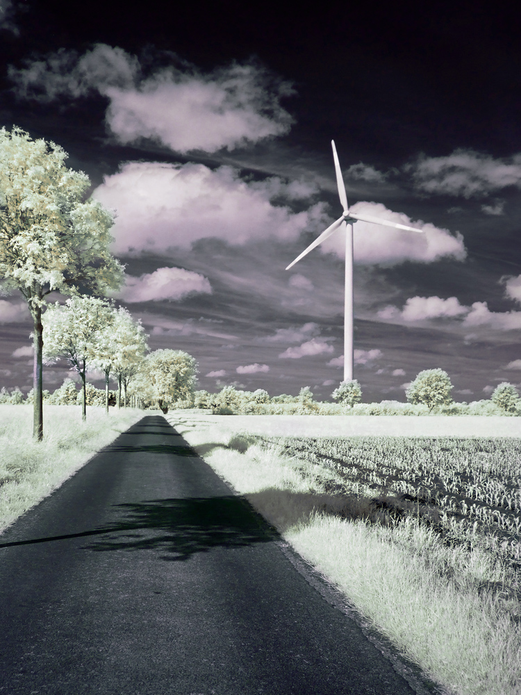 Weg zum Windrad