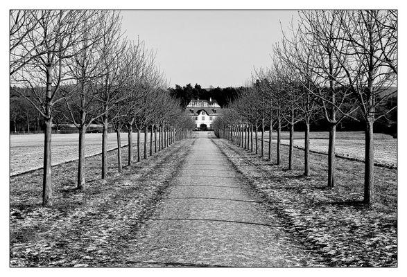 Weg zur Alten Meierei