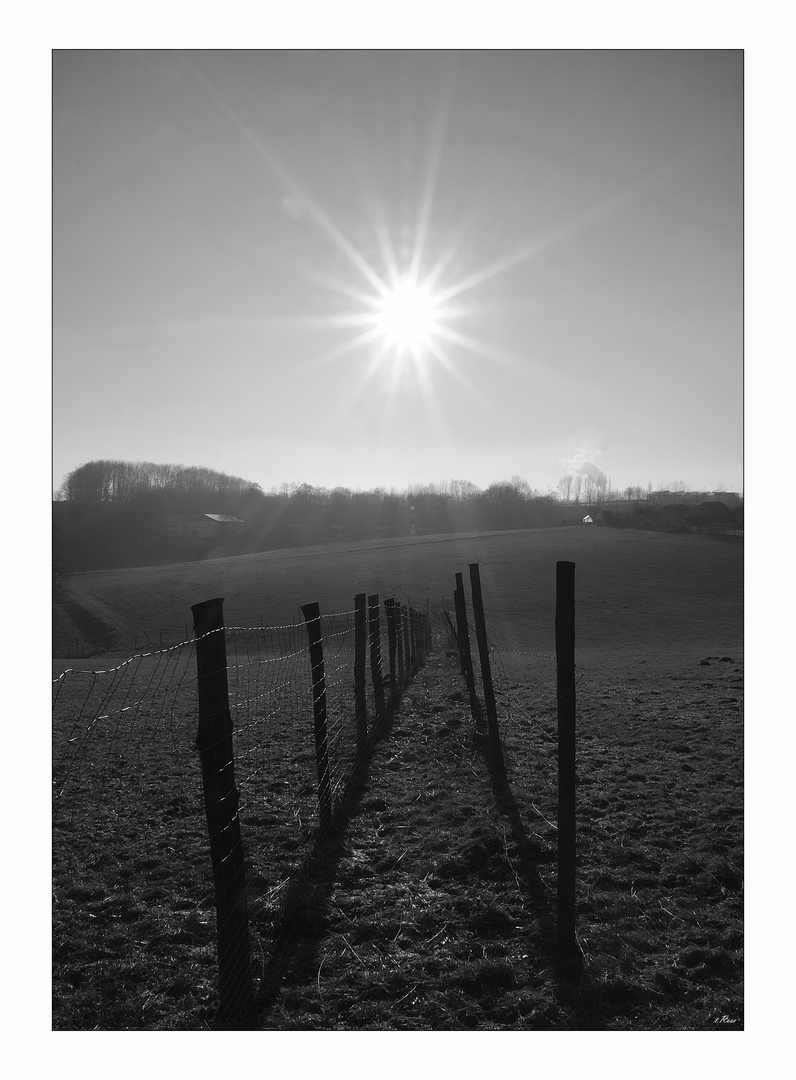 Weg zur Sonne