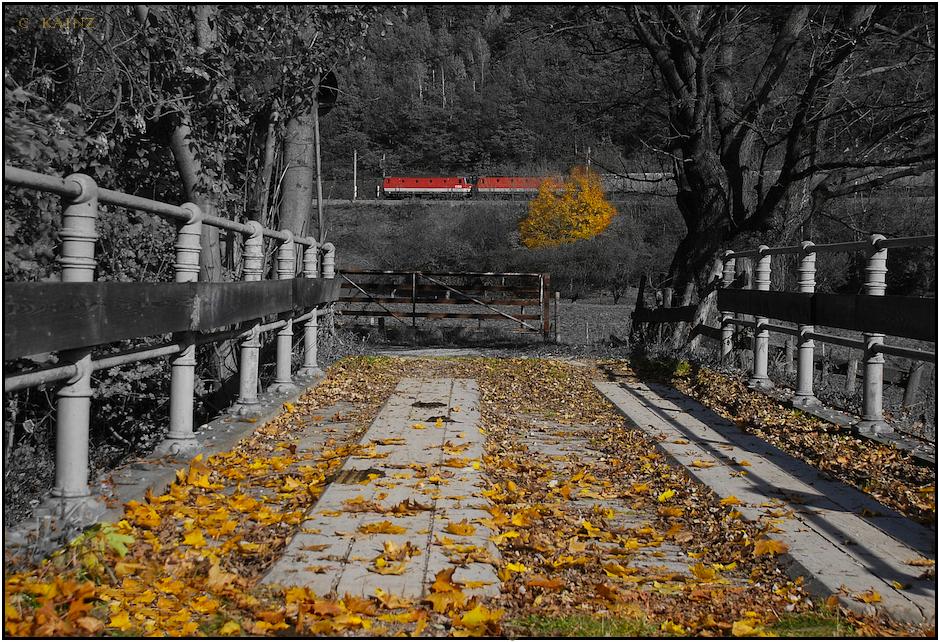 Wegbrücke bei Schlöglmühl