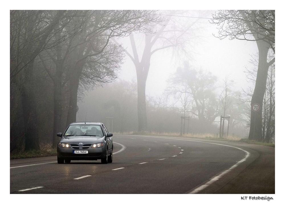 Wege aus dem Nebel....