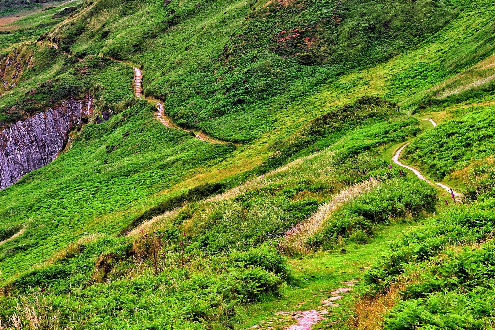 Wege durch die Landschaft