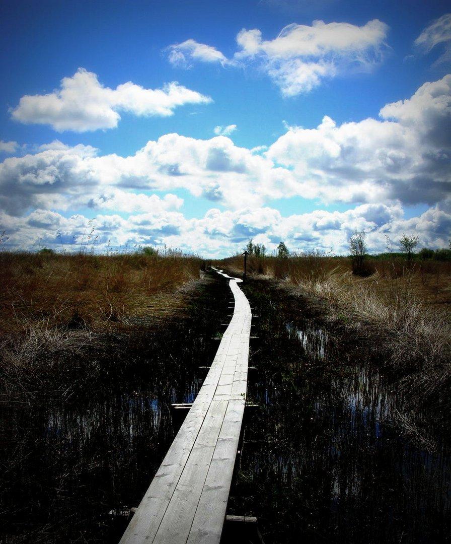 Wege entstehen dadurch, dass man sie geht. -Franz Kafka