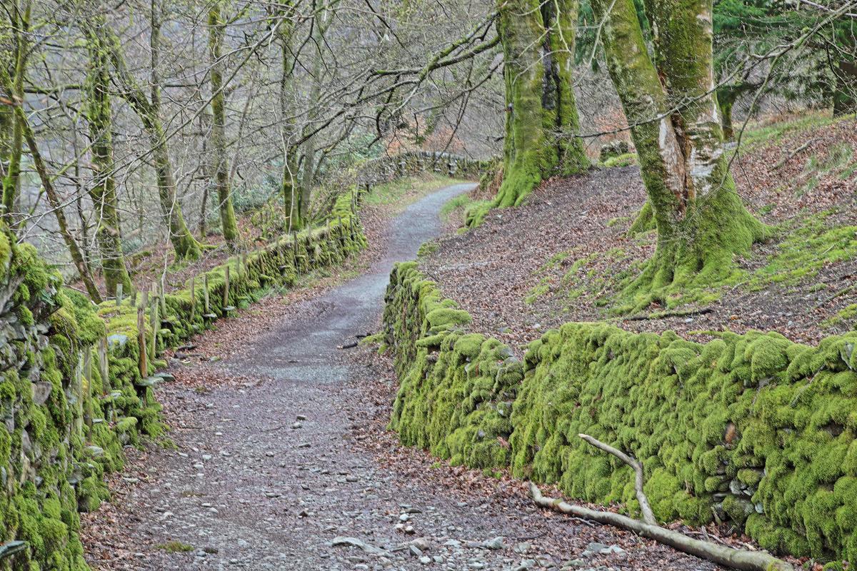 Wege in Lake District