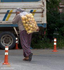 Wegen der paar Zitronen musst Du doch nicht sauer sein,Suleyka