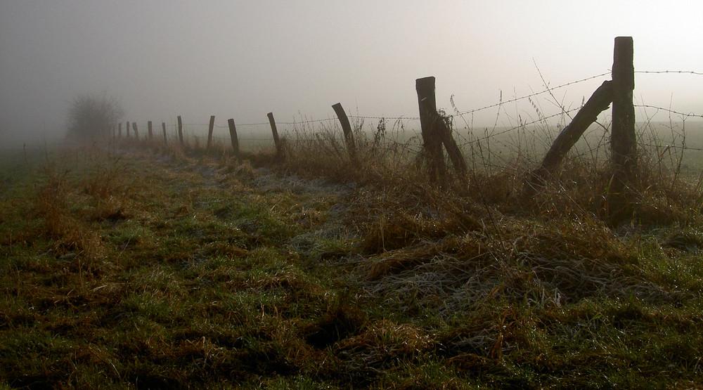 wegrand + nebel