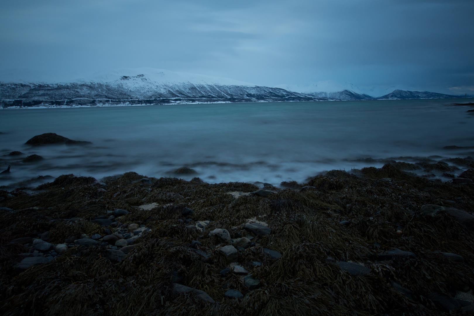weiches kaltes Meer