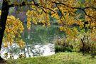 Weiher im Herbst *2* von Thee B.