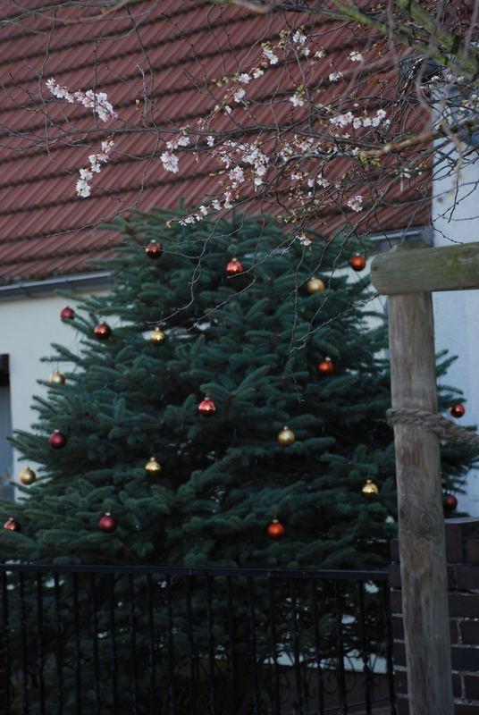 Weihnachten 2006 der 2. - Wer ist denn nun zeitgemäss ???