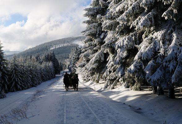 Weihnachten 2008 am Fichtelberg
