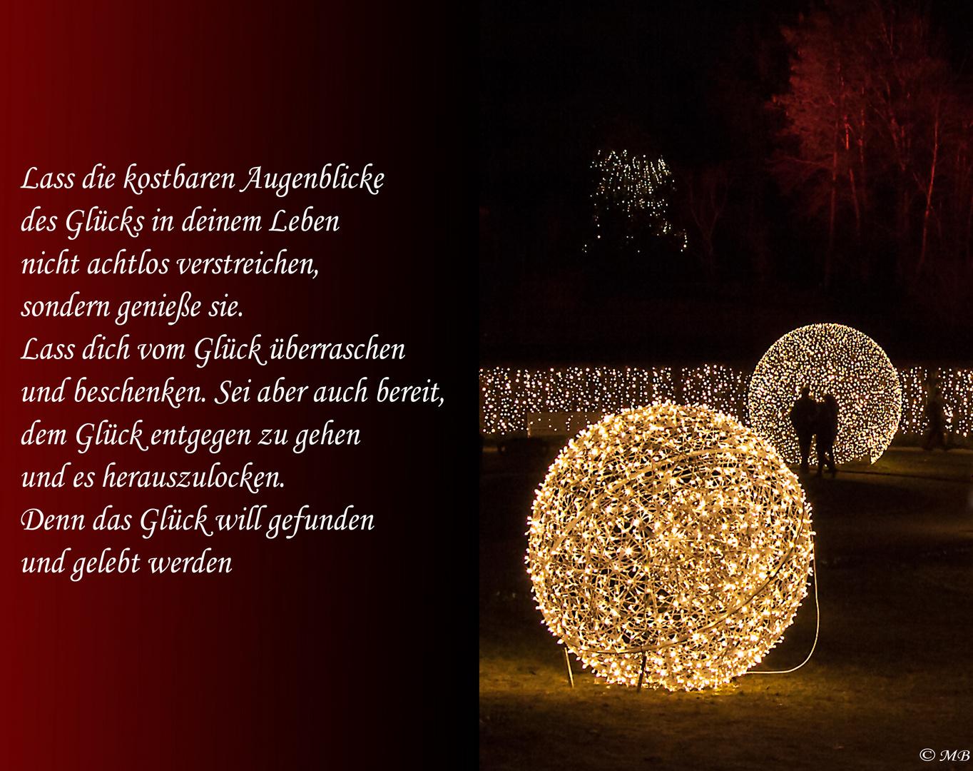 Weihnachten 2016   ( Botanischer Garten Berlin)