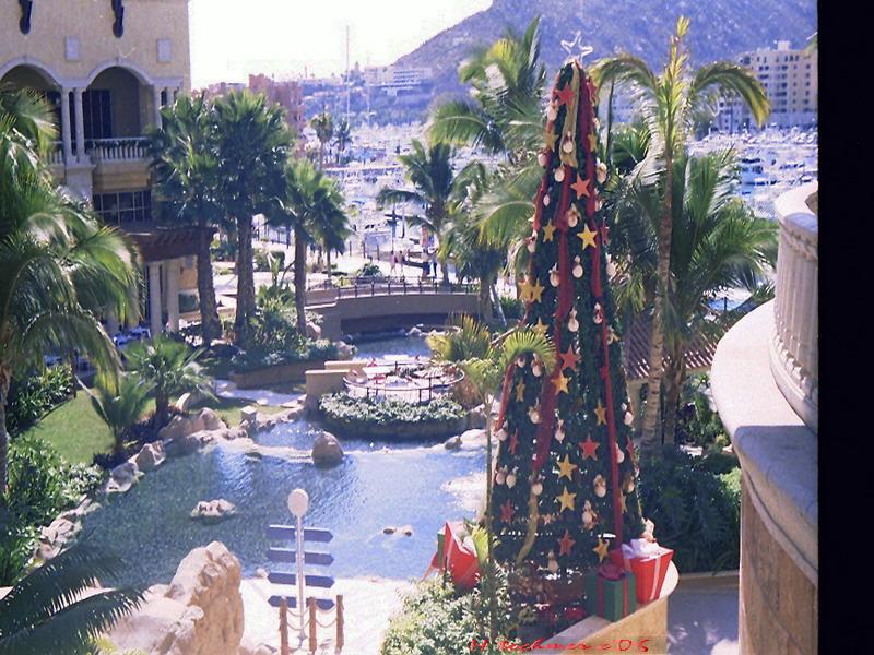 weihnachten in mexico foto bild gratulation und feiertage weihnachten christmas spezial. Black Bedroom Furniture Sets. Home Design Ideas
