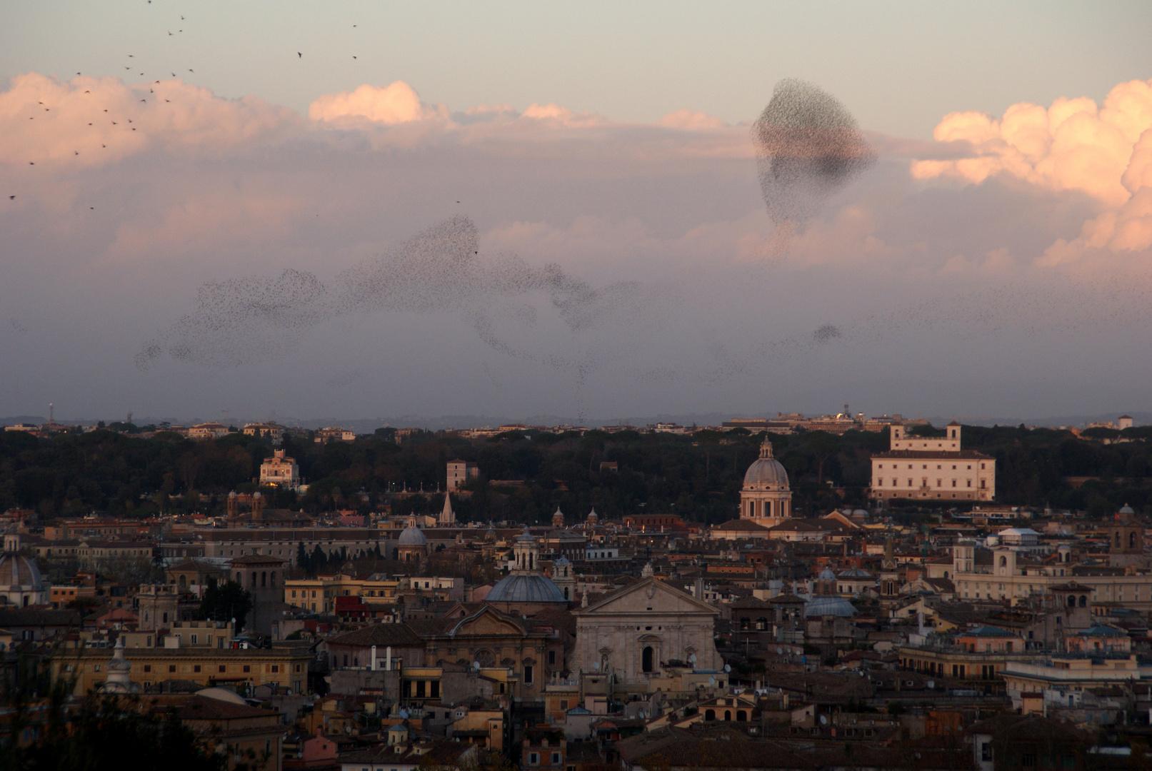 Weihnachten in Rom (6) - Himmelsfiguren