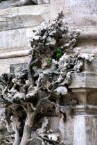 Weihnachten in Rom (8) - Verwandlung