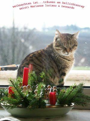 weihnachten ist!!!!!!!
