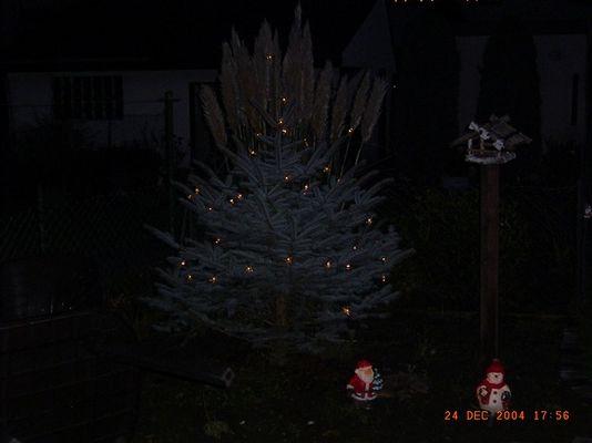 Weihnachten ohne Schnee ;-(