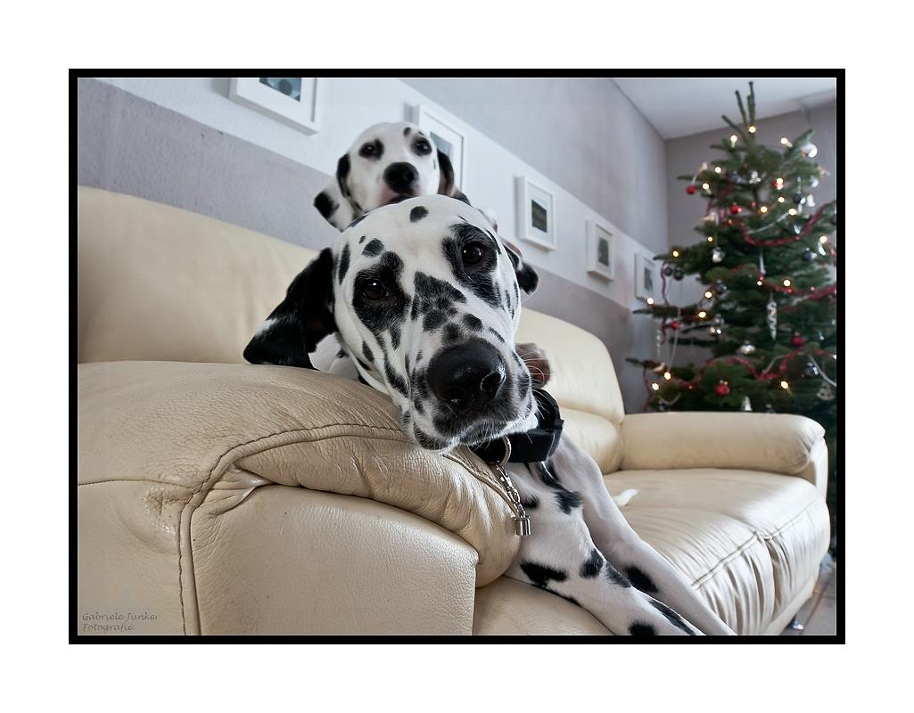 Weihnachten relaxed....