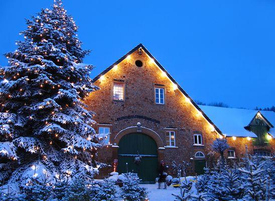 Weihnachtlicher Hof