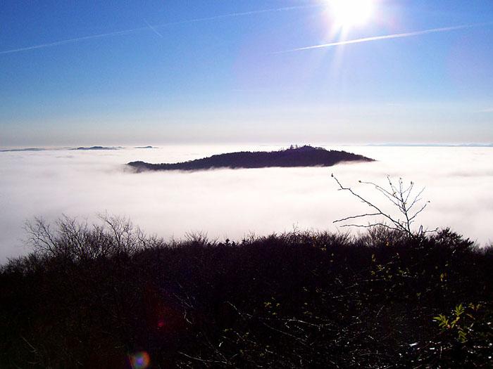 Weihnachts-Nebel
