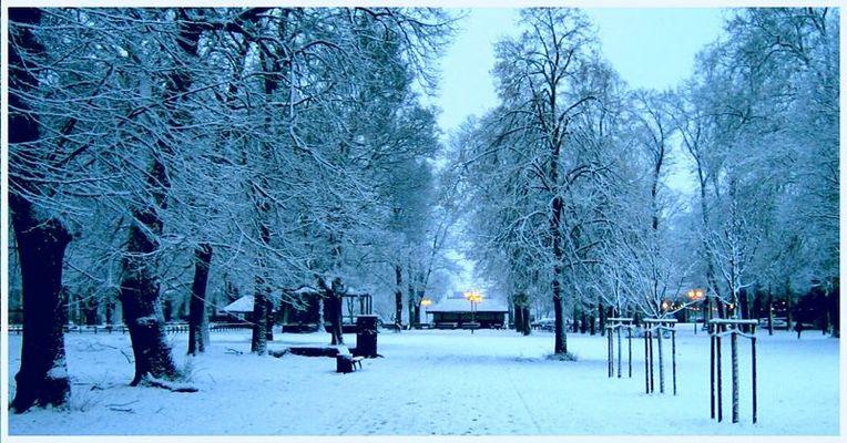 Weihnachtsabend im Park