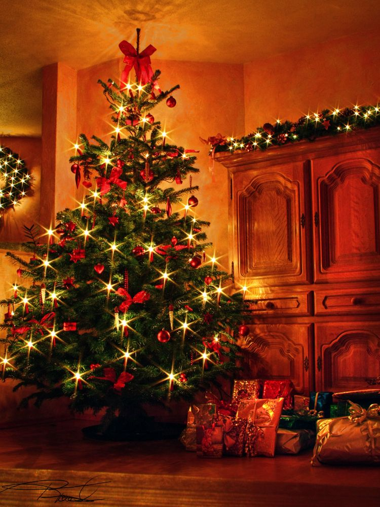 weihnachtsbaum 2009 foto bild gratulation und. Black Bedroom Furniture Sets. Home Design Ideas