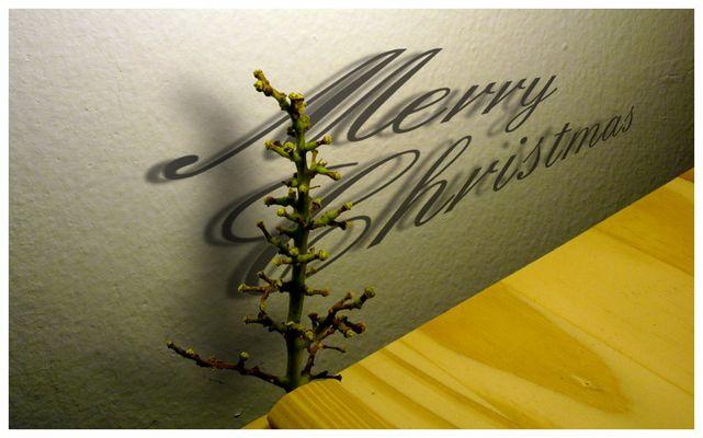 Weihnachtsbaum für Arme