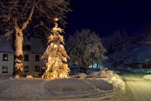 schnee weihnachtsbaum fotos bilder auf fotocommunity. Black Bedroom Furniture Sets. Home Design Ideas