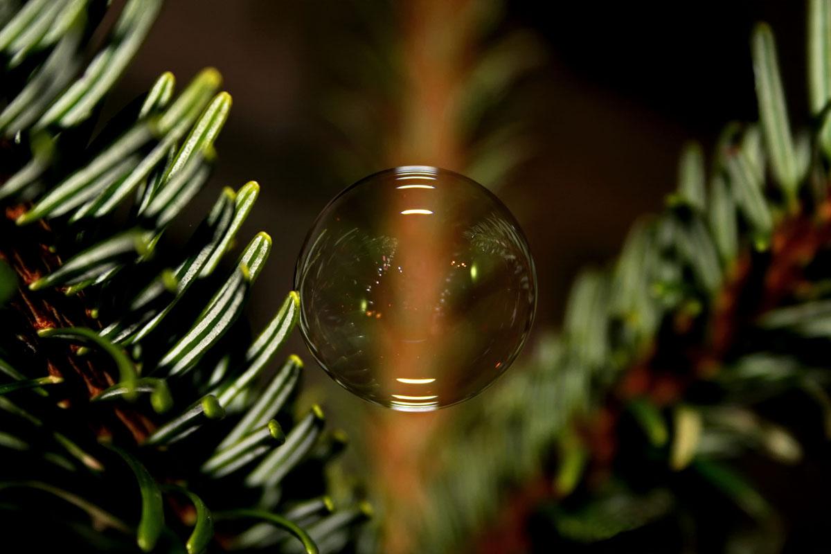 Weihnachtsbaum - Kugel