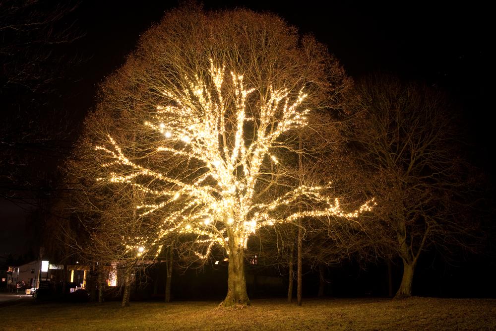 weihnachtsbeleuchtung foto bild jahreszeiten winter natur bilder auf fotocommunity. Black Bedroom Furniture Sets. Home Design Ideas