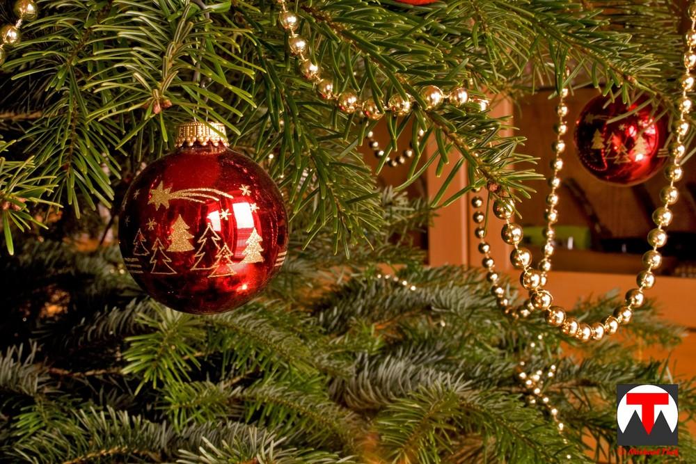 weihnachtsgedanken foto bild gratulation und feiertage. Black Bedroom Furniture Sets. Home Design Ideas
