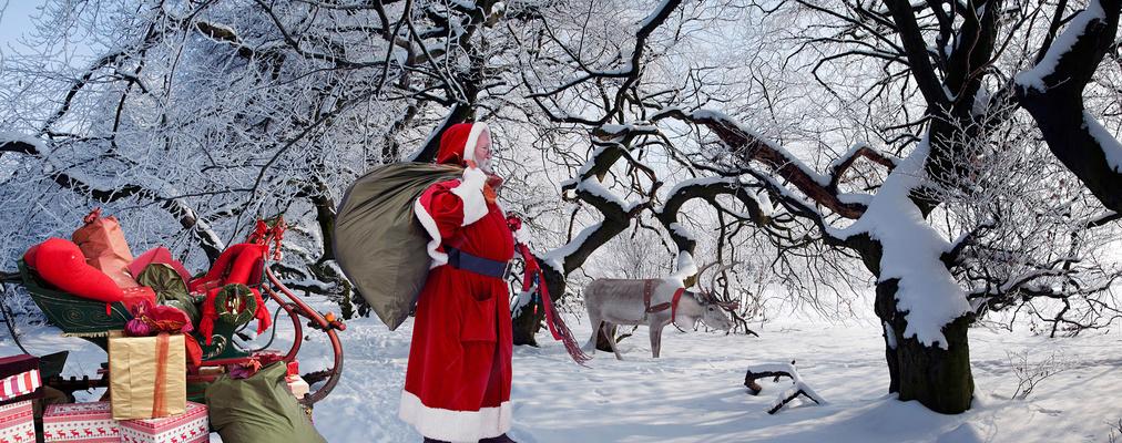 Weihnachtsmann im Zauberwald