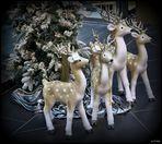... Weihnachtsschlussverkauf ...